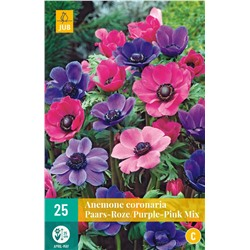 Coronaria Paars / Roze - Purple / Pink Mix 25 шт